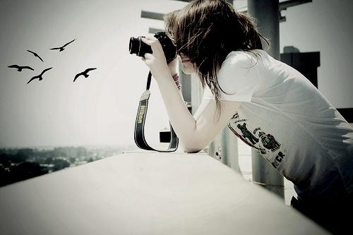 birds-camera-cool-girl-nikon-Favim.com-136631