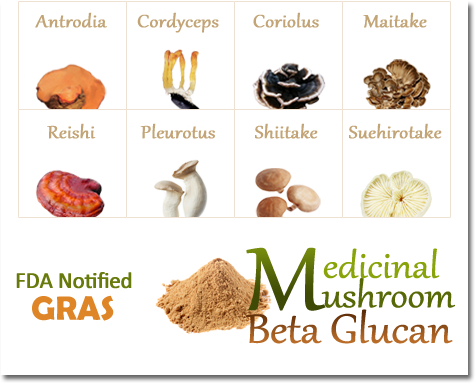 Medicinal-Mushroom-Beta-Glucan